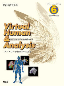 Virtual Human & Analysis No.9