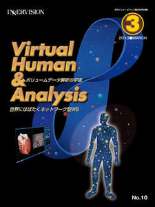 Virtual Human & Analysis No.10