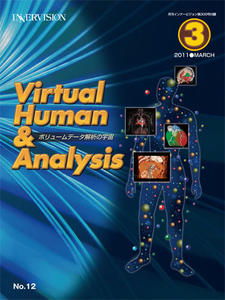 Virtual Human & Analysis No.12