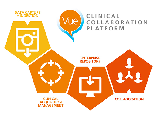 図1 CCP(Clinical Collaboration Platform)