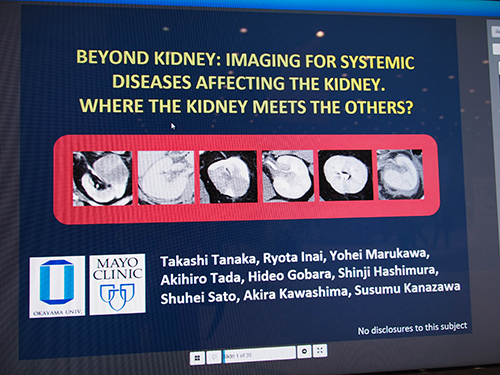 Beyond Kidney: Imaging for Systemic Diseases Affecting the Kidney. Where the Kidney Meets the Others?