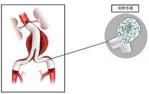 画像とITの医療情報ポータルサイト